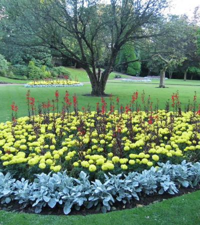 Garden of flowers at Manor Park in Glossop