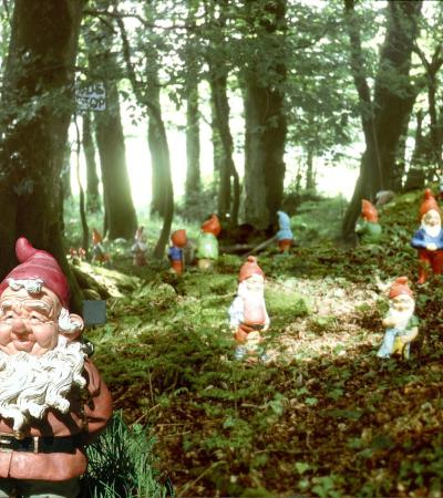 Gnomes at The Gnome Reserve in Bradworthy