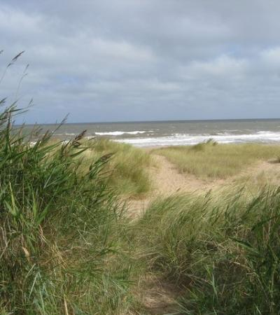 The dunes at Anderby Beach, Skegness