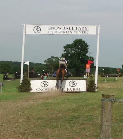 Horse and rider jumping at Snowball Farm Equestrian Centre in Slough