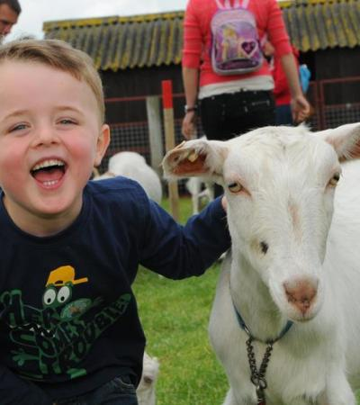 Boy with goat at Farmer Gows Activity Farm in Faringdon