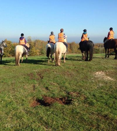 Horses and riders at Derbyshire Pony Trekking in Mansfield