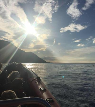 Passengers on boat from Ilfracombe Sea Safari in Exeter