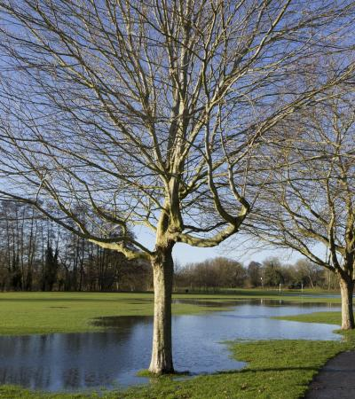 Landscape of Northcroft and Goldwell Parks in Newbury