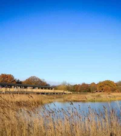 Huts by lake at Potteric Carr Nature Reserve in Doncaster