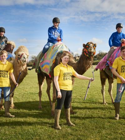 Kids on camels at Josephs Amazing Camels in Shipston-on-Stour