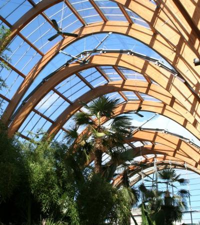 Glass roof at The Winter Garden in Sheffield