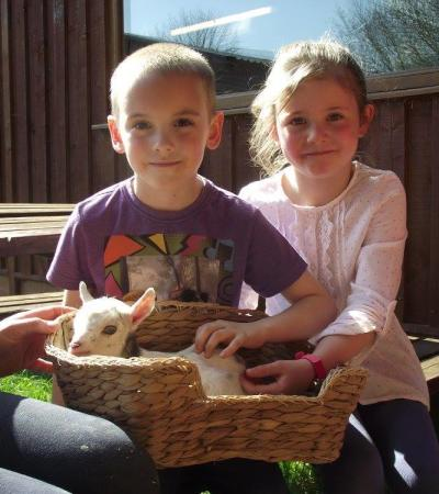 Kids with baby goat at Hoar Park in Nuneaton