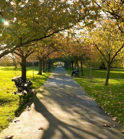 Walking path at Greenwich Park