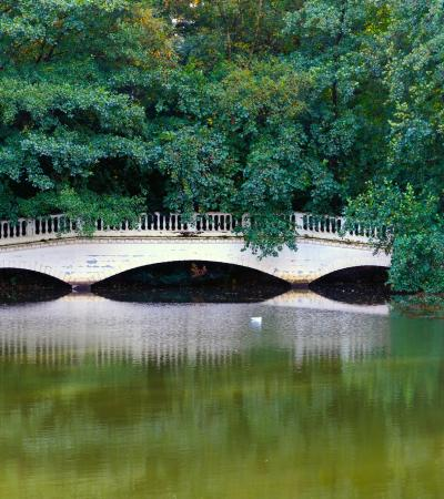 Bridge at Hampstead Ponds in Highgate