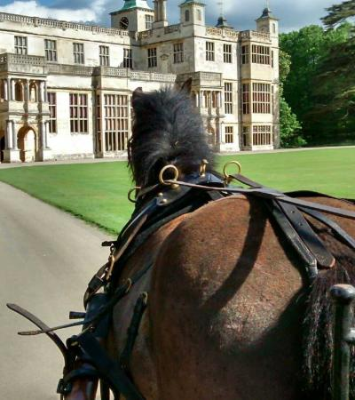 Horse and carriage at Audley End House and Park in Saffron Walden