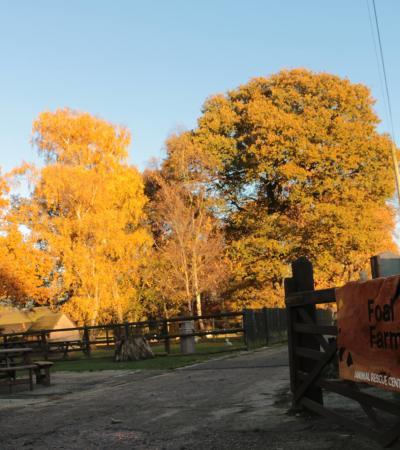 Entrance to Foal Farm Animal Rescue Centre in Biggin Hill