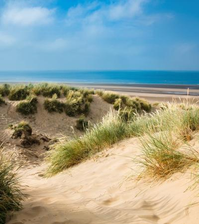 Grassy sand dunes on beach at Camber Sands in East Sussex