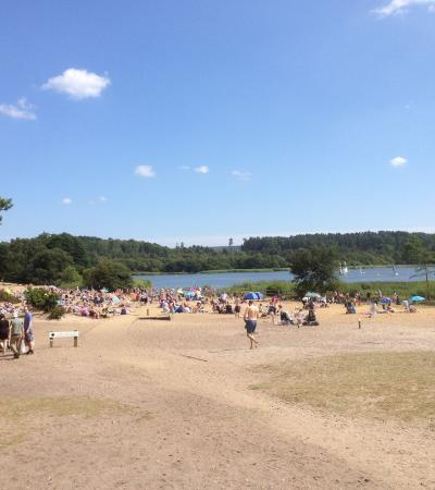 Visitors at Frensham Great Pond