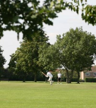 People playing cricket at Chelmer Park in Chelmsford