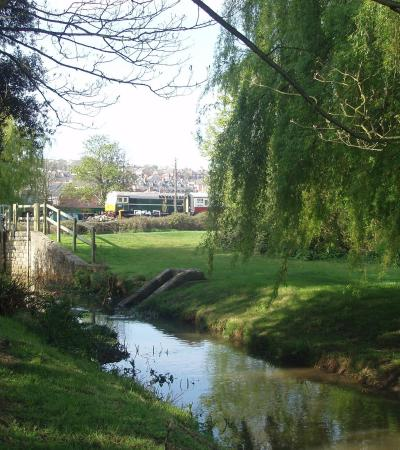 Stream at King Georges Playing Fields in Brentwood