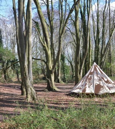 Tent at Woodland Adventurers in Corsham