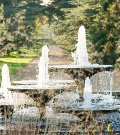 Fountains at Cambridge University Botanic Garden