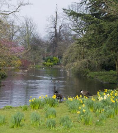 Riverside at Ravenscourt Park in London