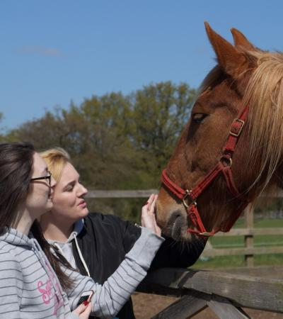 Girls stroking horse at Redwings Ada Cole in Nazeing