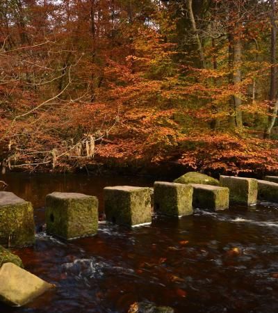 Stepping stones at Hardcastle Craggs in Hebden Bridge