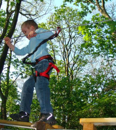 Boy on high rope course at Jungle Parc Northampton in Wellingborough