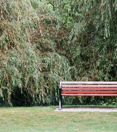 Bench at Ray Mill Island in Maidenhead