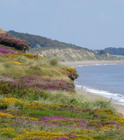 Clear day at Dunwich Heath Coastal Centre and Beach in Saxmundham