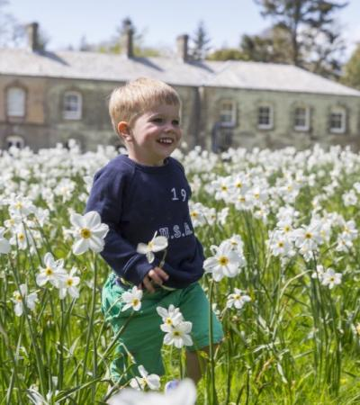 A little boy in Spring at Arlington Court, photo credit National Trust image/Chris Lacey