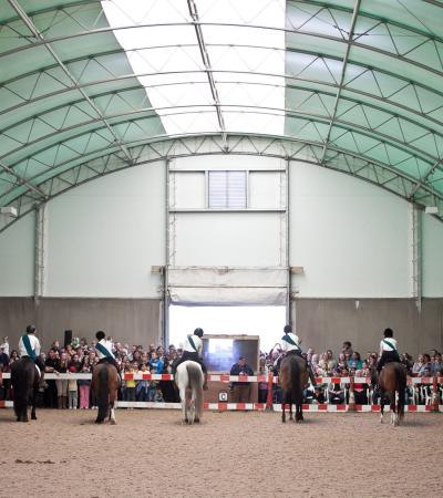 Riders and horses in dressage competition at Aldersbrook Riding School in London