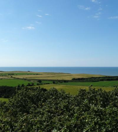 View from Sheringham Park