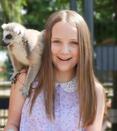 Girl with lemur at Tropical Butterfly House in Sheffield