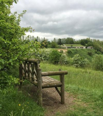 Bench at College Lake Nature Reserve in Tring