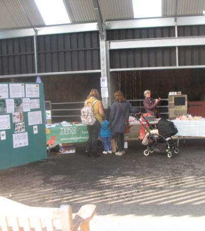 Apple Day event at Harlow Town Park