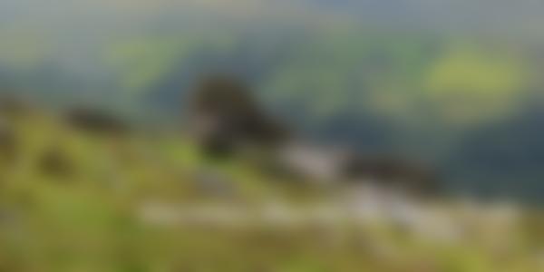 The Dartmouth hills in Devon for Dartmouth Murder Mystery Treasure Trail