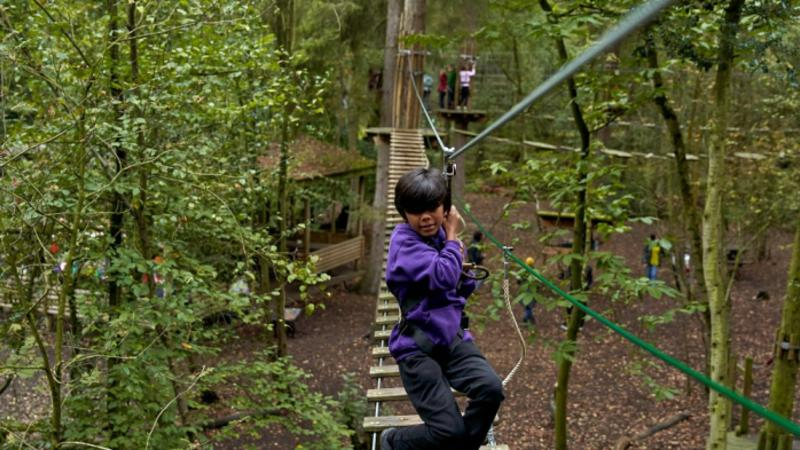 Go Ape Forest Of Dean Day Out With The Kids