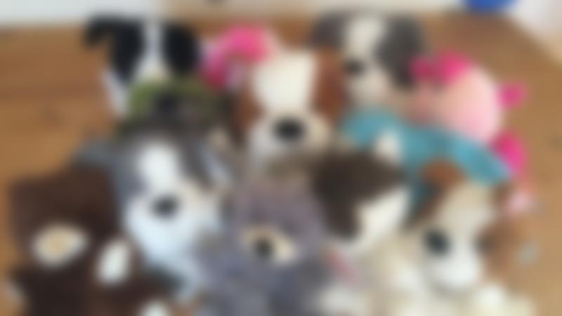 Stuffed animals at Ark Kidz in Long Sutton