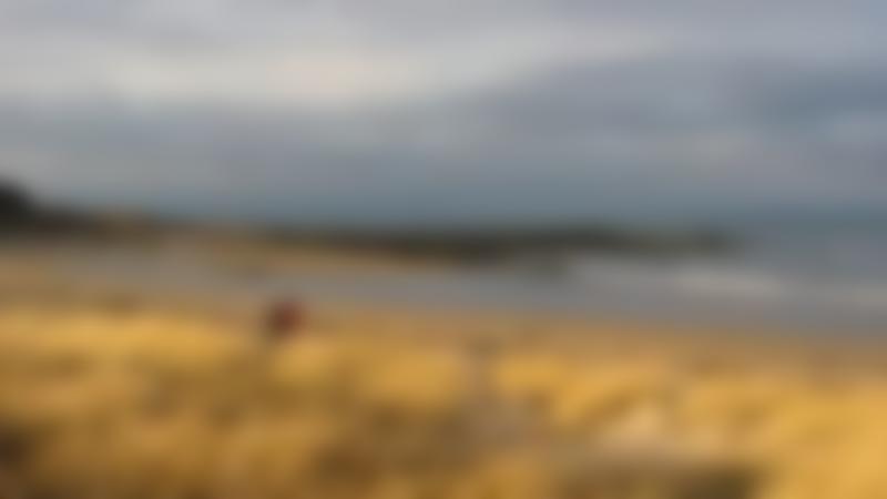 Beach at Yellowcraig in North Berwick