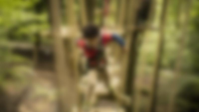 A boy on a walkway at Treetop Trek Manchester