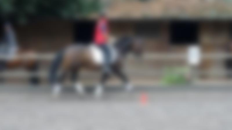 Person horse riding at Budleigh Salterton Riding School