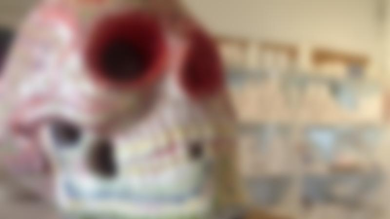 Painted skull at Wild Raspberry Ceramic Cafe in Chelmondiston