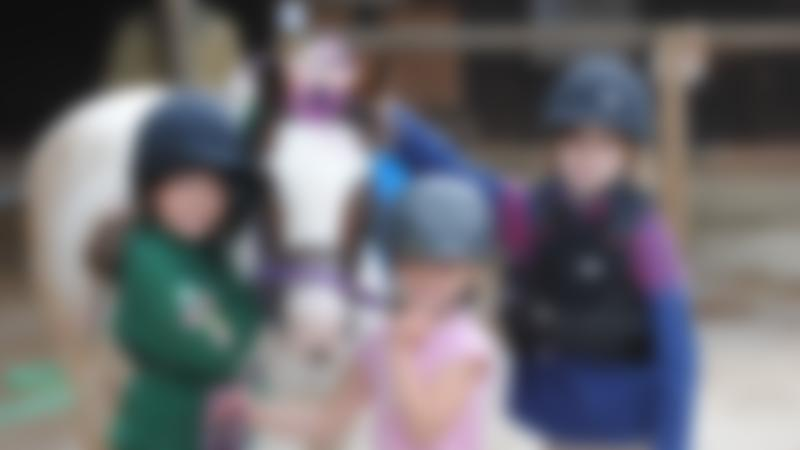 Kids with horse at Country Treks Equestrian Centre in Kidderminster
