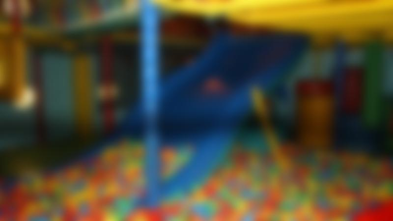 Ball pit and slide at Fuzzy Ed's Horse & Jockey