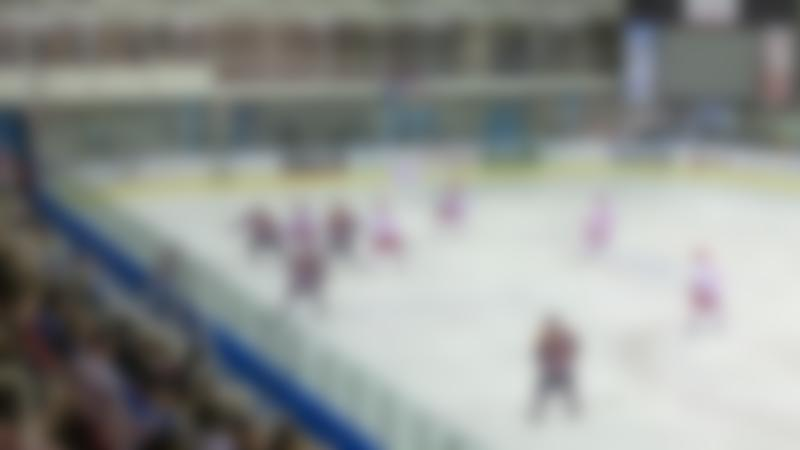 Ice hockey match at The Link Centre in Swindon