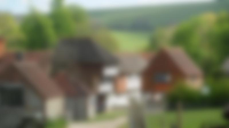 Tudor buildings at Weald and Downland Living Museum in Chichester