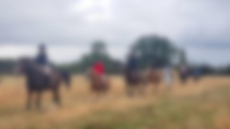 People riding horses at Aldborough Hall Equestrian Centre in Ilford