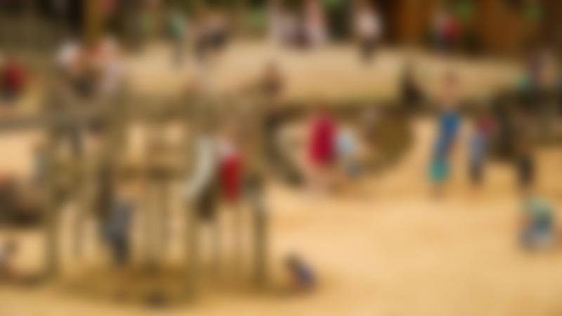 Families on playground at York Maze