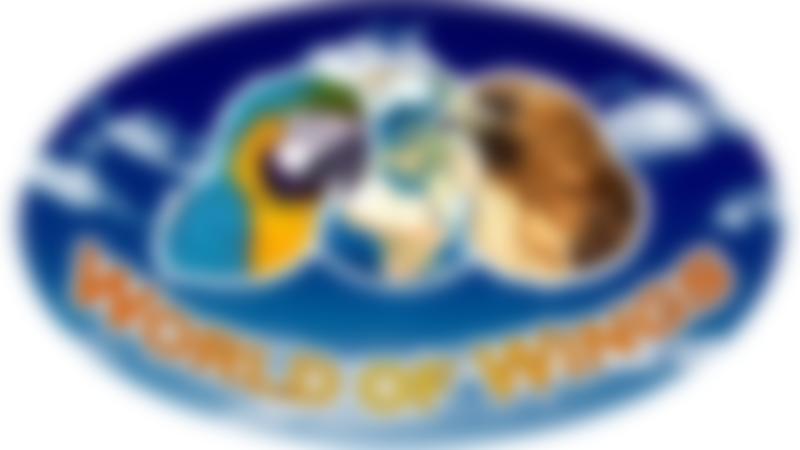 Logo of World of Wings in Cumbernauld