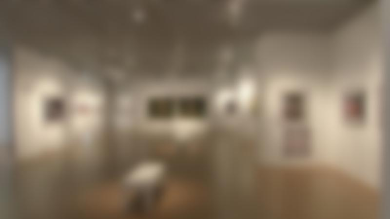 Gallery at Potteries Museum & Art Gallery in Stoke on Trent