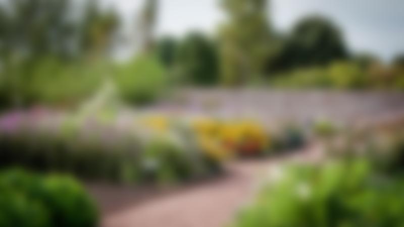 Garden at Archerfield Walled Garden in North Berwick